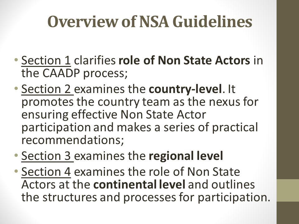 Overview of NSA Guidelines Section 1 clarifies role of Non State Actors in the CAADP process; Section 2 examines the country-level.