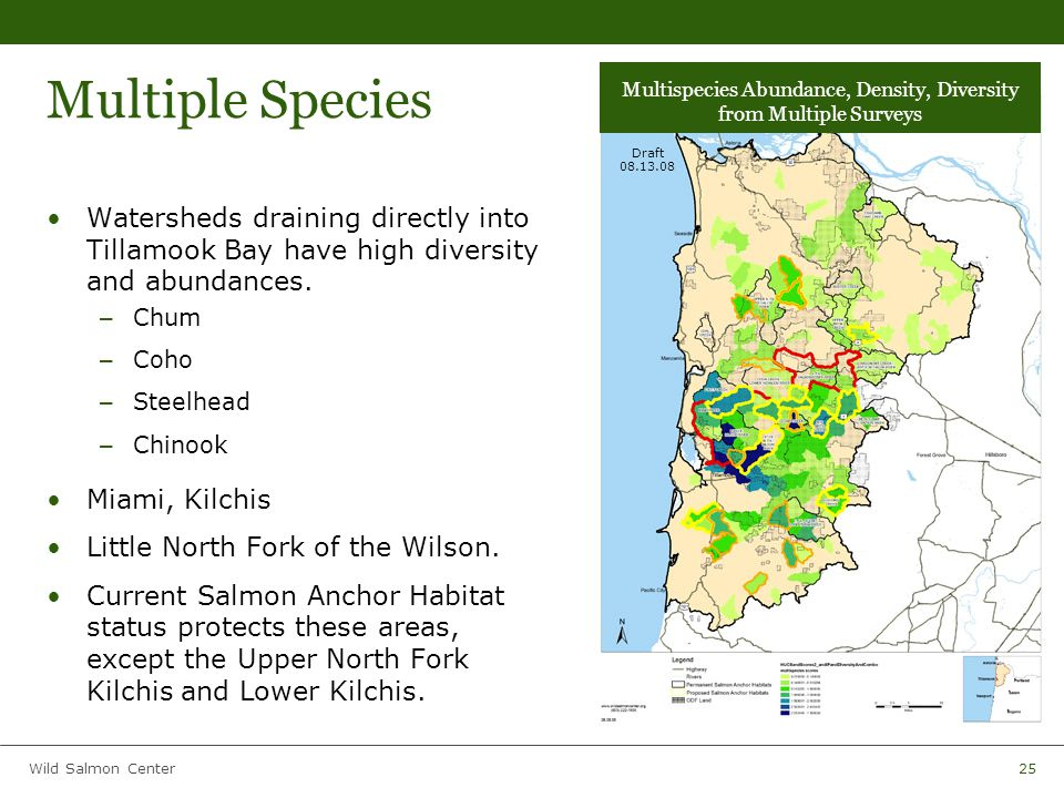 Wild Salmon Center25 Multiple Species Watersheds draining directly into Tillamook Bay have high diversity and abundances.