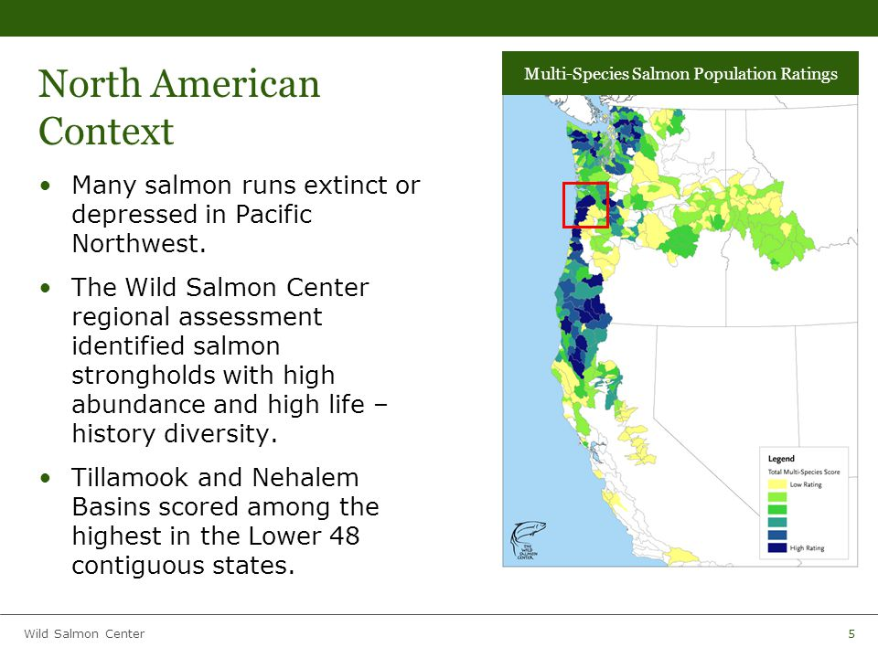 Wild Salmon Center16 Collaborative Decision Support Model The analysis was conducted with the expertise and input of: – Oregon Dept.