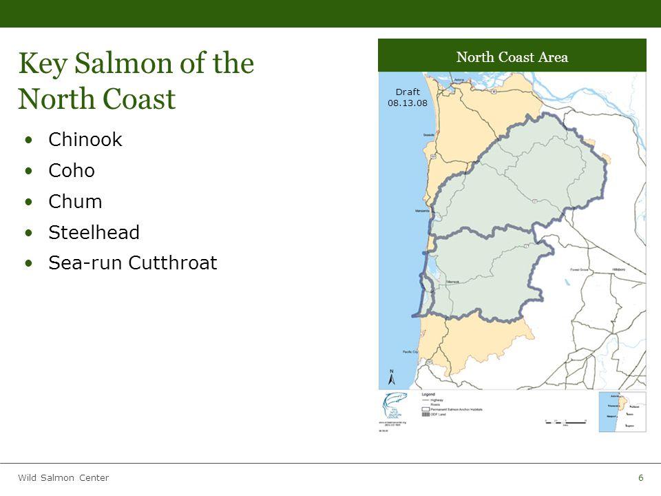 Wild Salmon Center6 Key Salmon of the North Coast Chinook Coho Chum Steelhead Sea-run Cutthroat Draft 08.13.08 North Coast Area