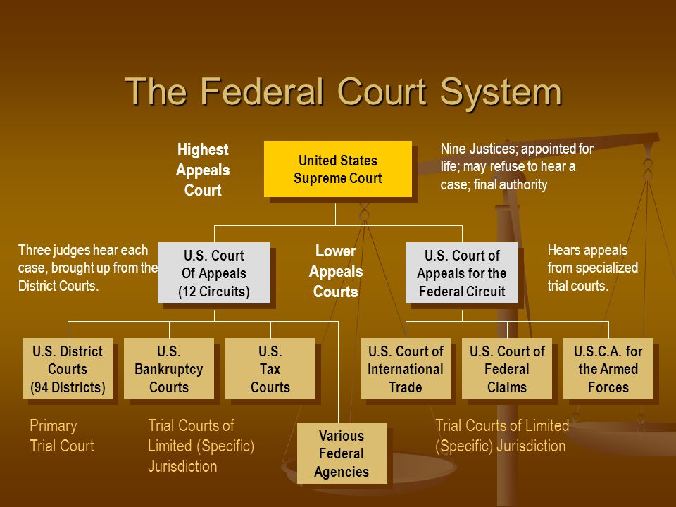 United States Supreme Court United States Supreme Court Nine Justices; appointed for life; may refuse to hear a case; final authority Three judges hea