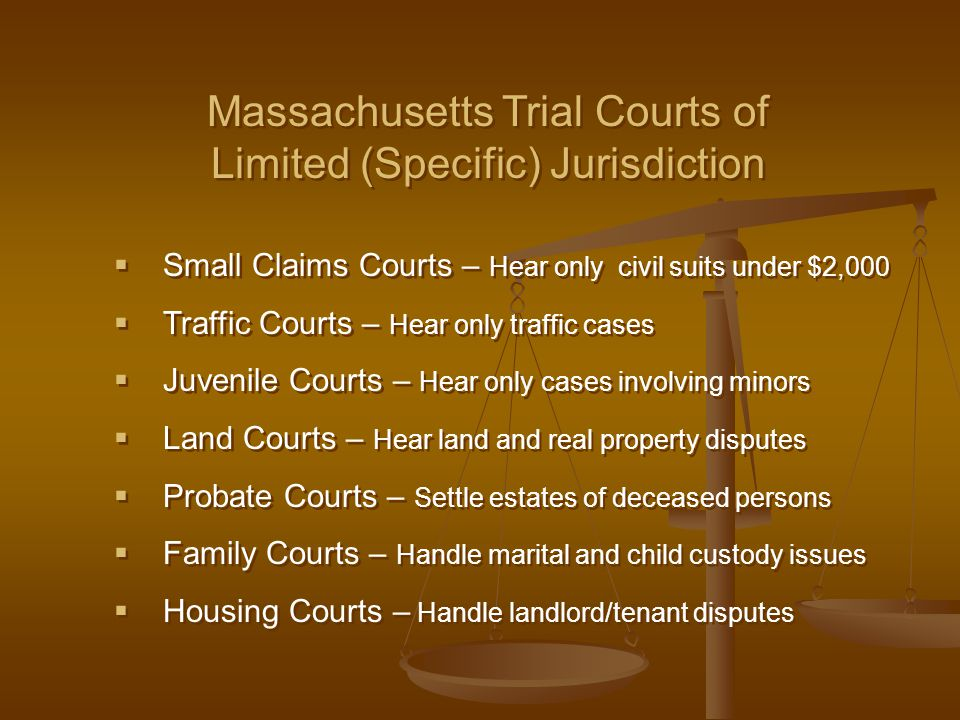  Small Claims Courts – Hear only civil suits under $2,000  Traffic Courts – Hear only traffic cases  Juvenile Courts – Hear only cases involving mi