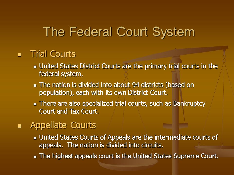 Trial Courts Trial Courts United States District Courts are the primary trial courts in the federal system. United States District Courts are the prim