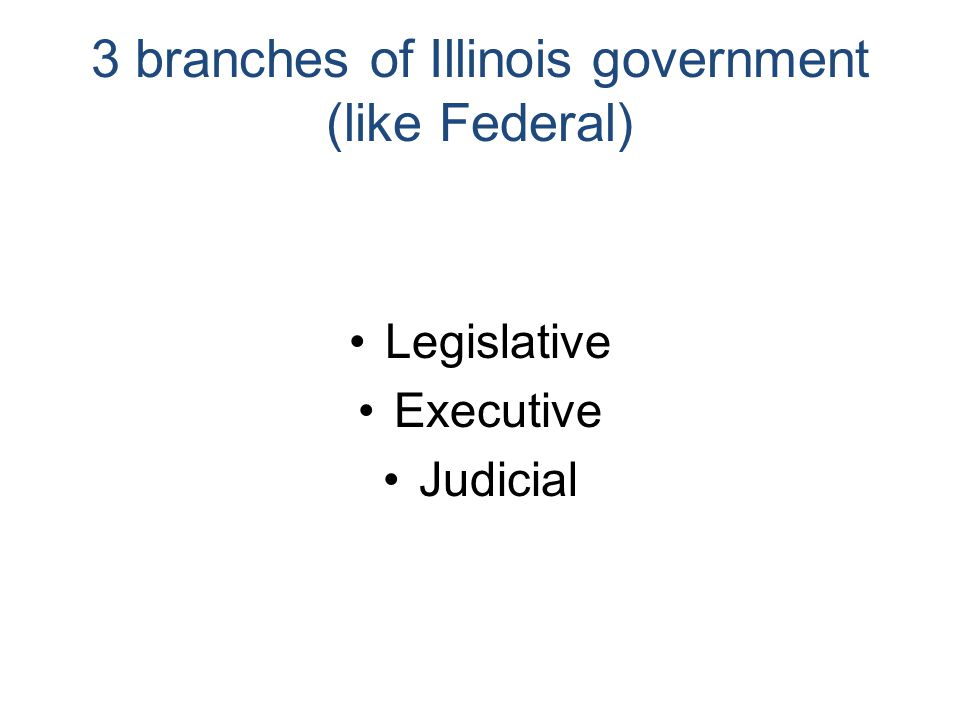 3 branches of Illinois government (like Federal) Legislative Executive Judicial