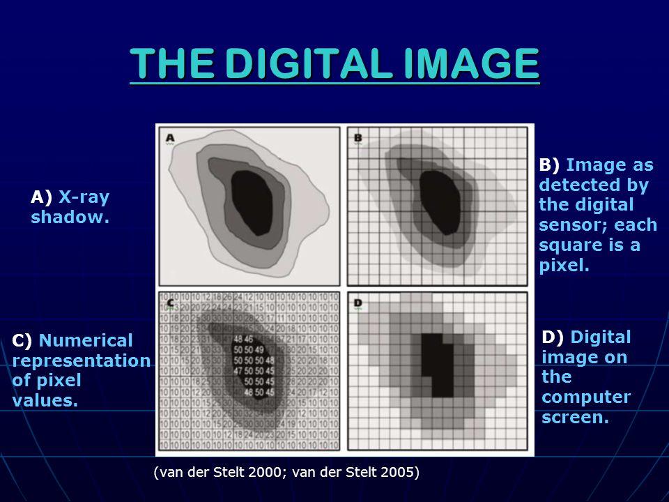 THE DIGITAL IMAGE C) Numerical representation of pixel values.
