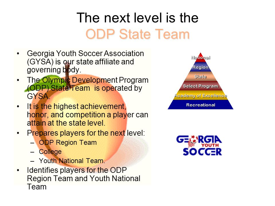 ODP State Team The next level is the ODP State Team is our stateGeorgia Youth Soccer Association (GYSA) is our state affiliate and governing body.