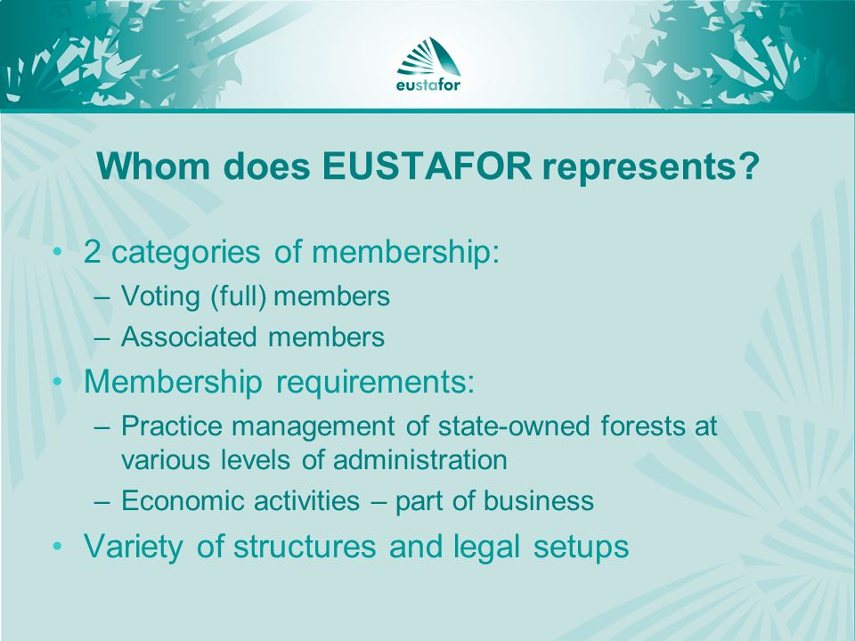 Whom does EUSTAFOR represents.
