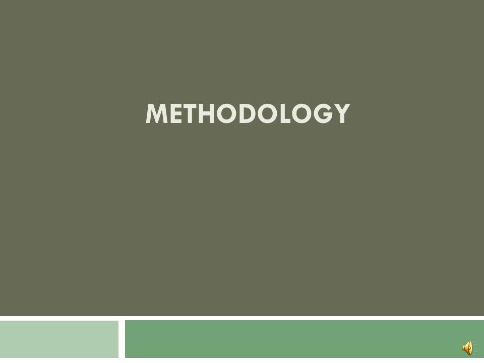 Study Area Model