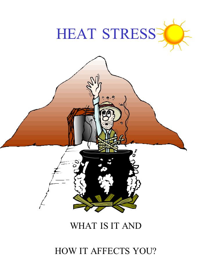HEAT STRESS WHAT IS IT AND HOW IT AFFECTS YOU