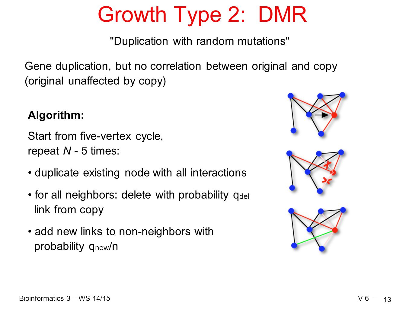 Bioinformatics 3 – WS 14/15V 6 – 13 Growth Type 2: DMR Duplication with random mutations Gene duplication, but no correlation between original and copy (original unaffected by copy) Algorithm: duplicate existing node with all interactions for all neighbors: delete with probability q del link from copy Start from five-vertex cycle, repeat N - 5 times: add new links to non-neighbors with probability q new /n