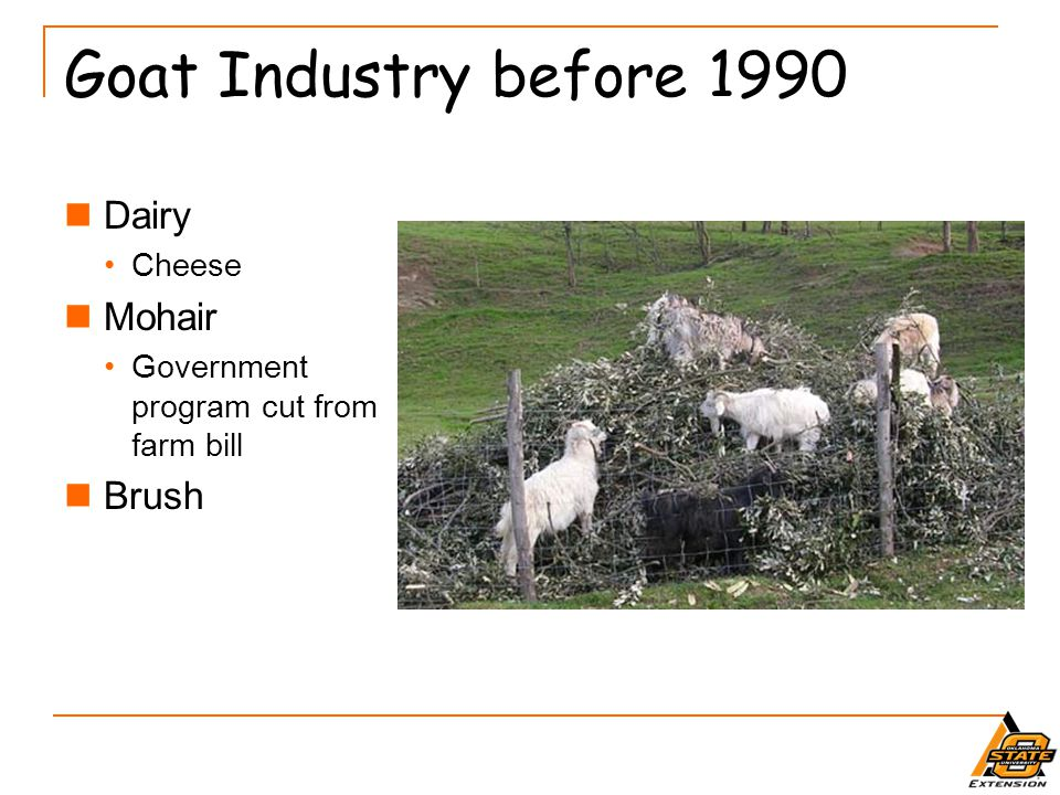 Goat Industry Challenges Production diversity and multiple products Demand diversity Demand future Will future generations continue to eat goat.