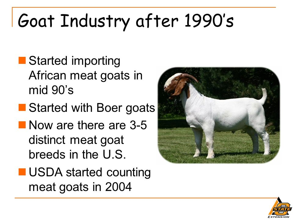 What about the future.Goat numbers continue to increase.