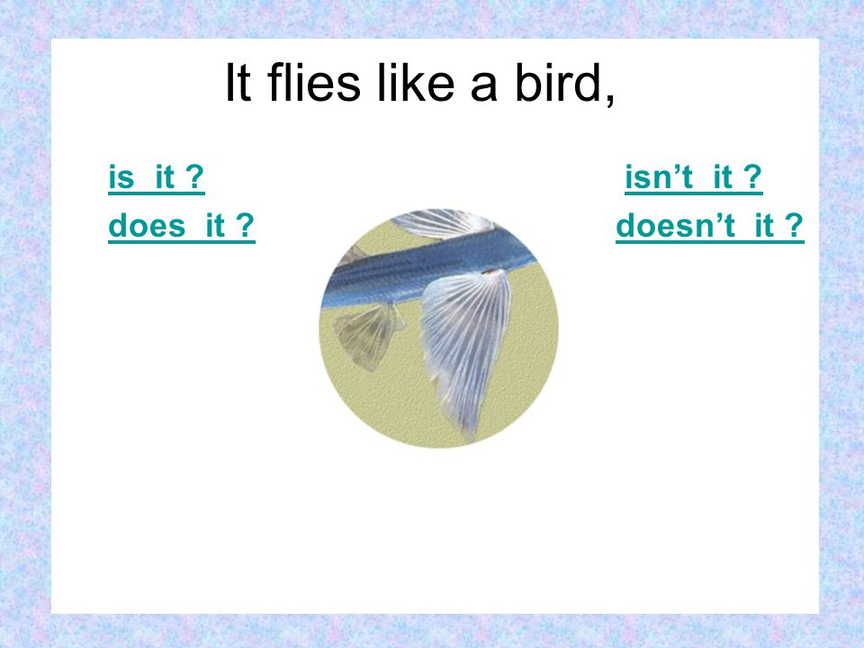 is it does it isn't it doesn't it It flies like a bird,