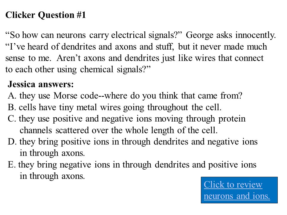 """Clicker Question #1 """"So how can neurons carry electrical signals?"""" George asks innocently. """"I've heard of dendrites and axons and stuff, but it never"""