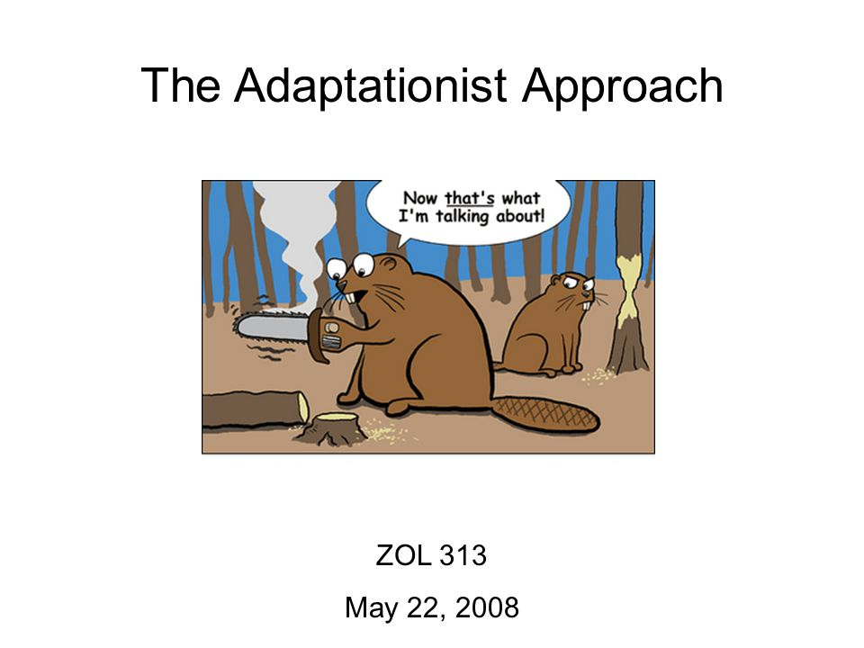 The Adaptationist Approach ZOL 313 May 22, 2008