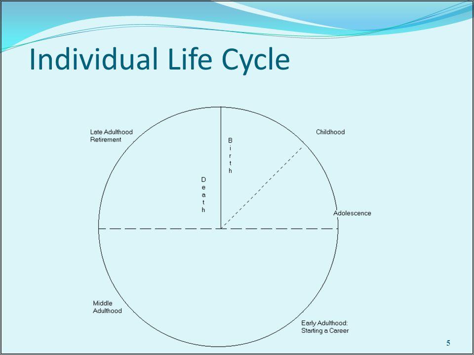 Individual Life Cycle 5