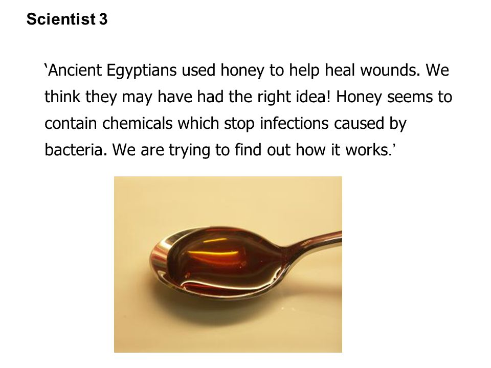 Scientist 3 'Ancient Egyptians used honey to help heal wounds.