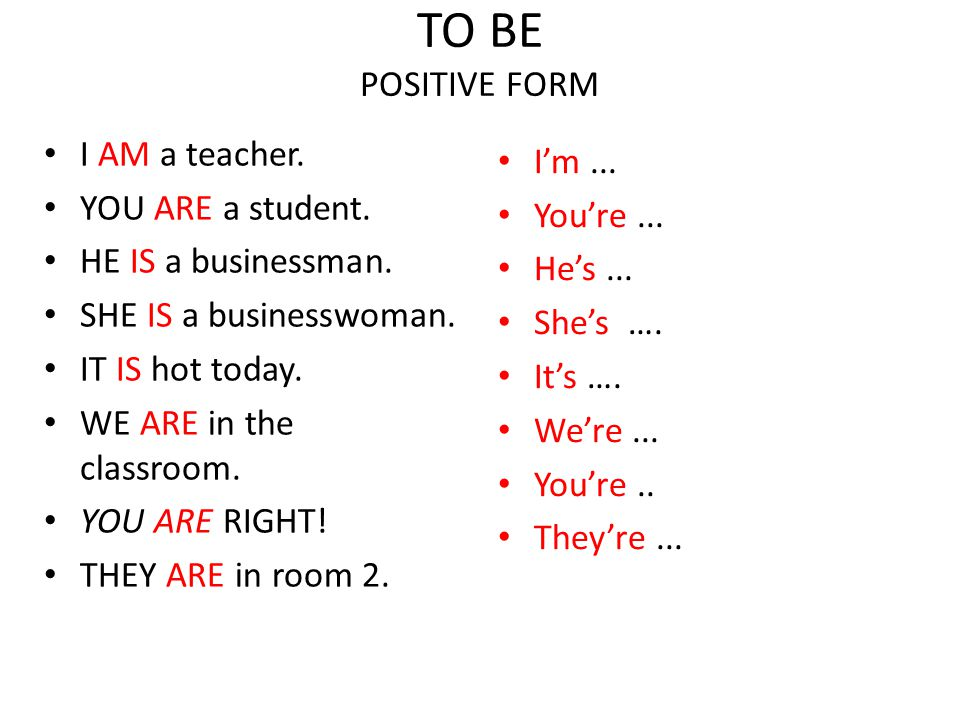 TO BE NEGATIVE FORM I AM NOT a CEO.You ARE NOT a law student.