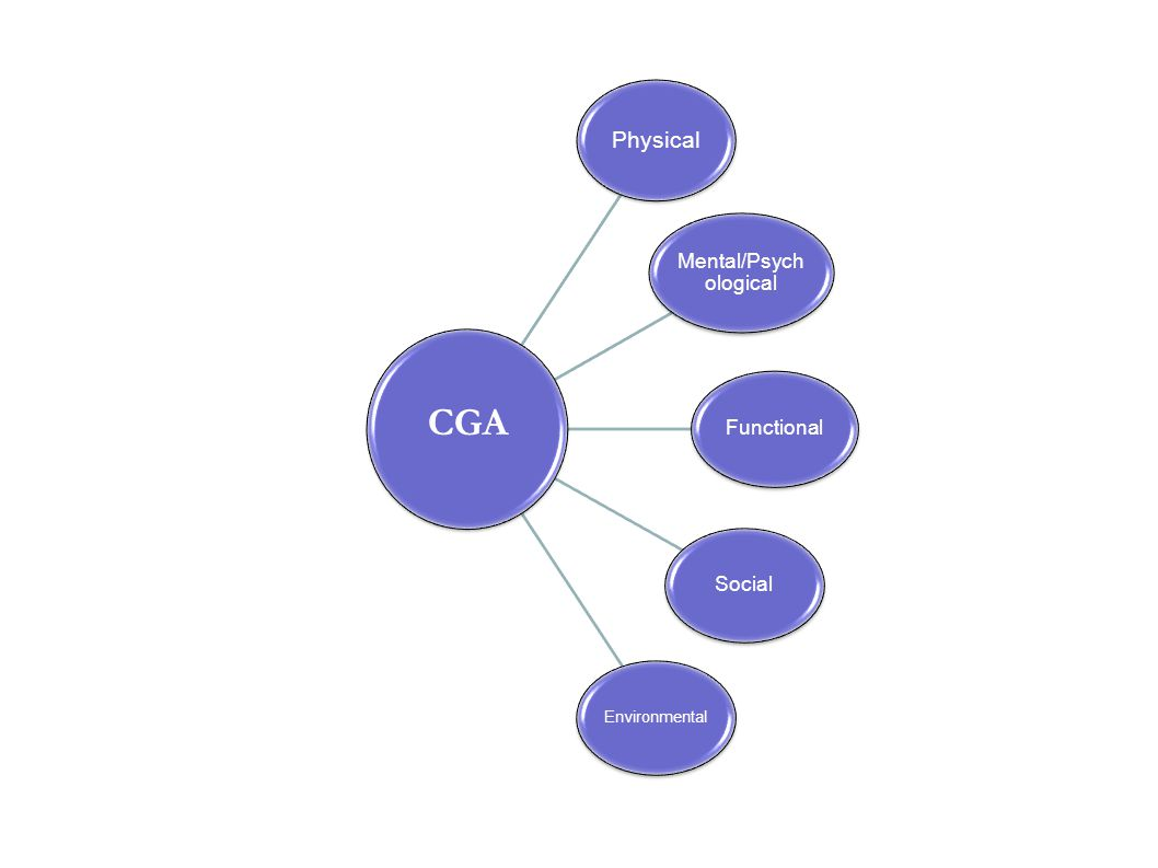 Physical Mental/Psych ological Functional Social Environmental CGA