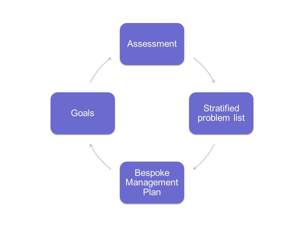 Assessment Stratified problem list Bespoke Management Plan Goals