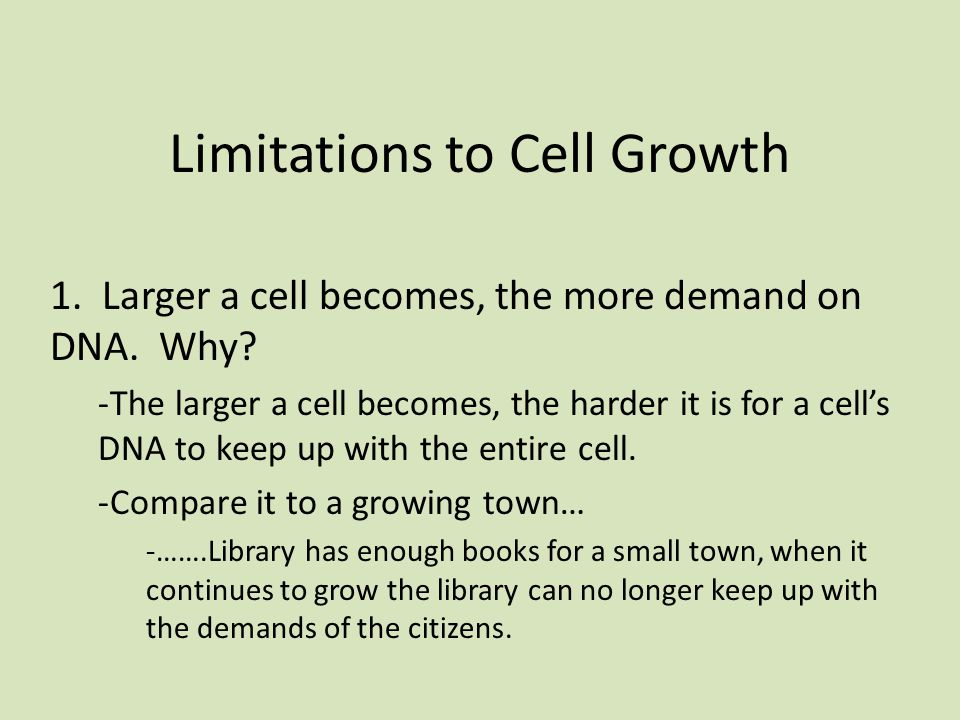 Limitations to Cell Growth 1. Larger a cell becomes, the more demand on DNA.