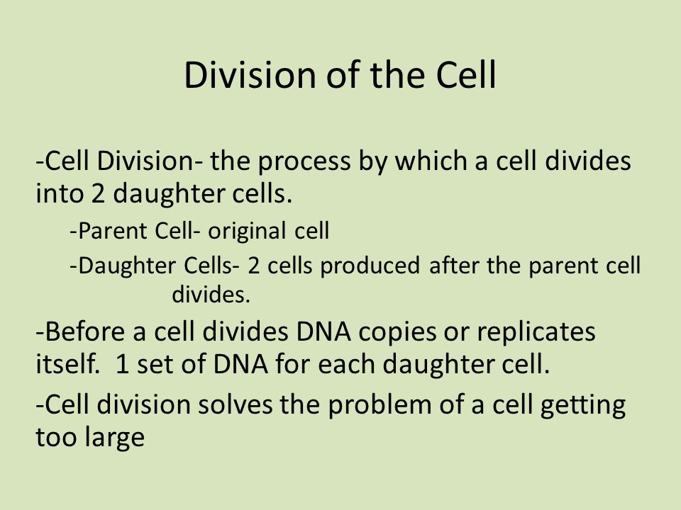Division of the Cell -Cell Division- the process by which a cell divides into 2 daughter cells.