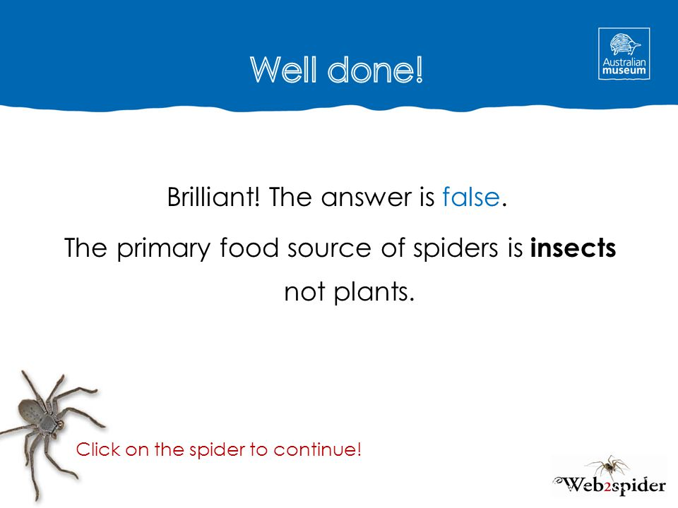The answer is false.The primary food source of spiders is insects not plants.