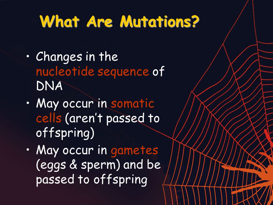 What Are Mutations.