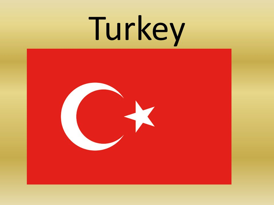 Important information Full name: Republic of Turkey (Türkiye Cumhuriyeti) Form of State: United parliamentary constitutional republic Head of State: the president Official language: Turkish Area: 783562km2 Population: 76 million