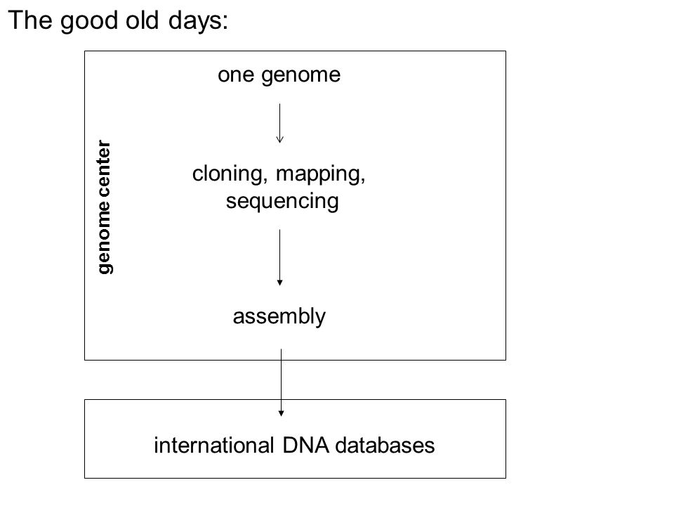 one genome cloning, mapping, sequencing assembly genome center international DNA databases The good old days: