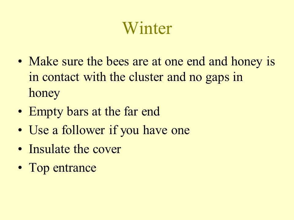 Winter Make sure the bees are at one end and honey is in contact with the cluster and no gaps in honey Empty bars at the far end Use a follower if you