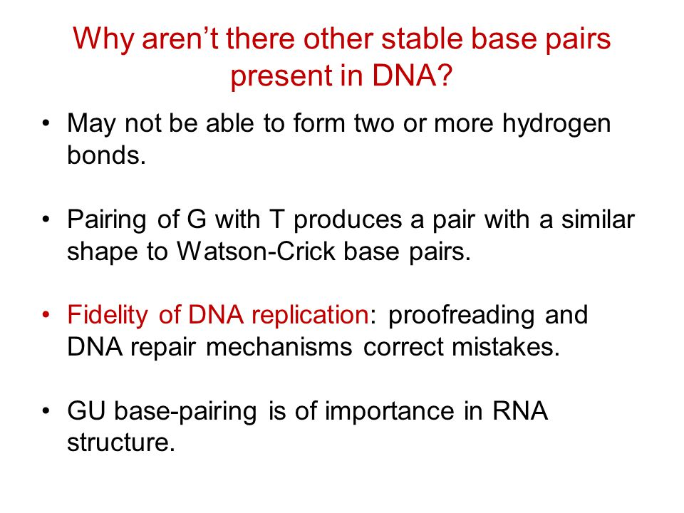 Why aren't there other stable base pairs present in DNA.
