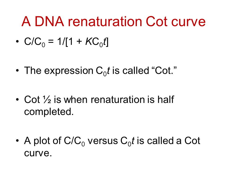"""A DNA renaturation Cot curve C/C 0 = 1/[1 + KC 0 t] The expression C 0 t is called """"Cot."""" Cot ½ is when renaturation is half completed. A plot of C/C"""