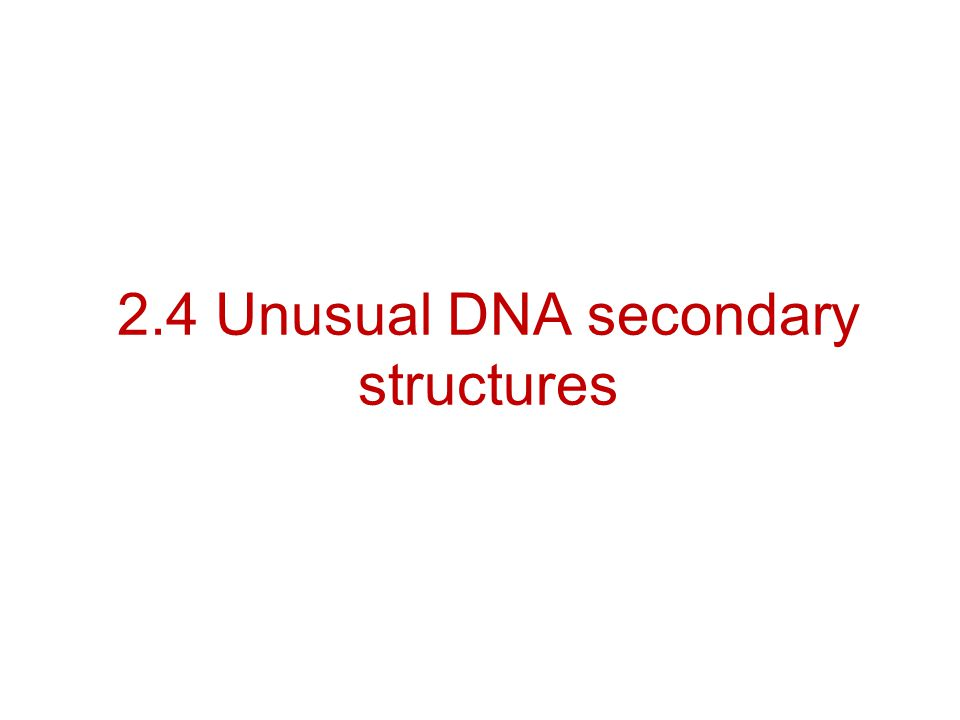 2.4 Unusual DNA secondary structures