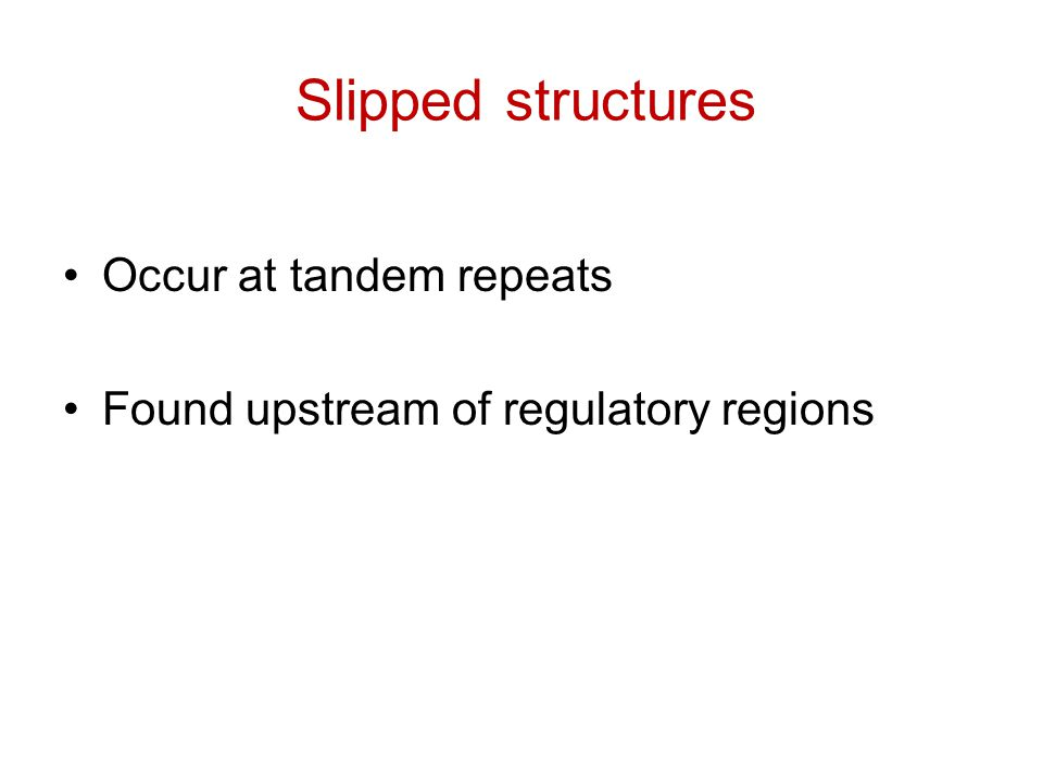 Slipped structures Occur at tandem repeats Found upstream of regulatory regions