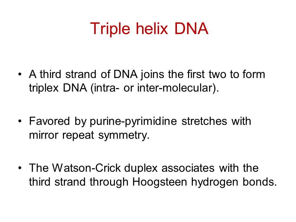 Triple helix DNA A third strand of DNA joins the first two to form triplex DNA (intra- or inter-molecular). Favored by purine-pyrimidine stretches wit