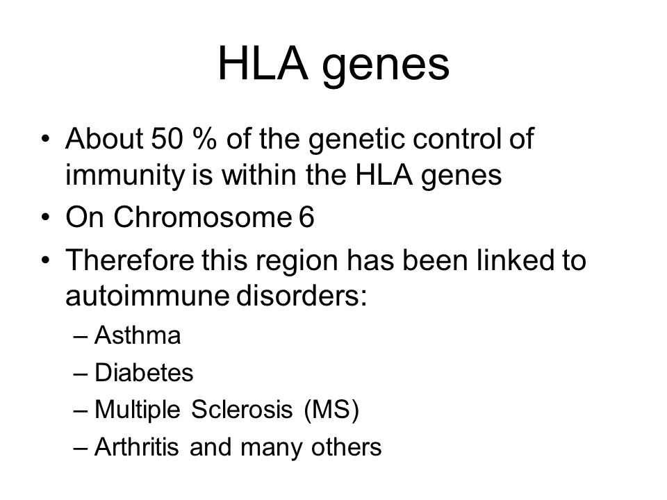 HLA genes About 50 % of the genetic control of immunity is within the HLA genes On Chromosome 6 Therefore this region has been linked to autoimmune di