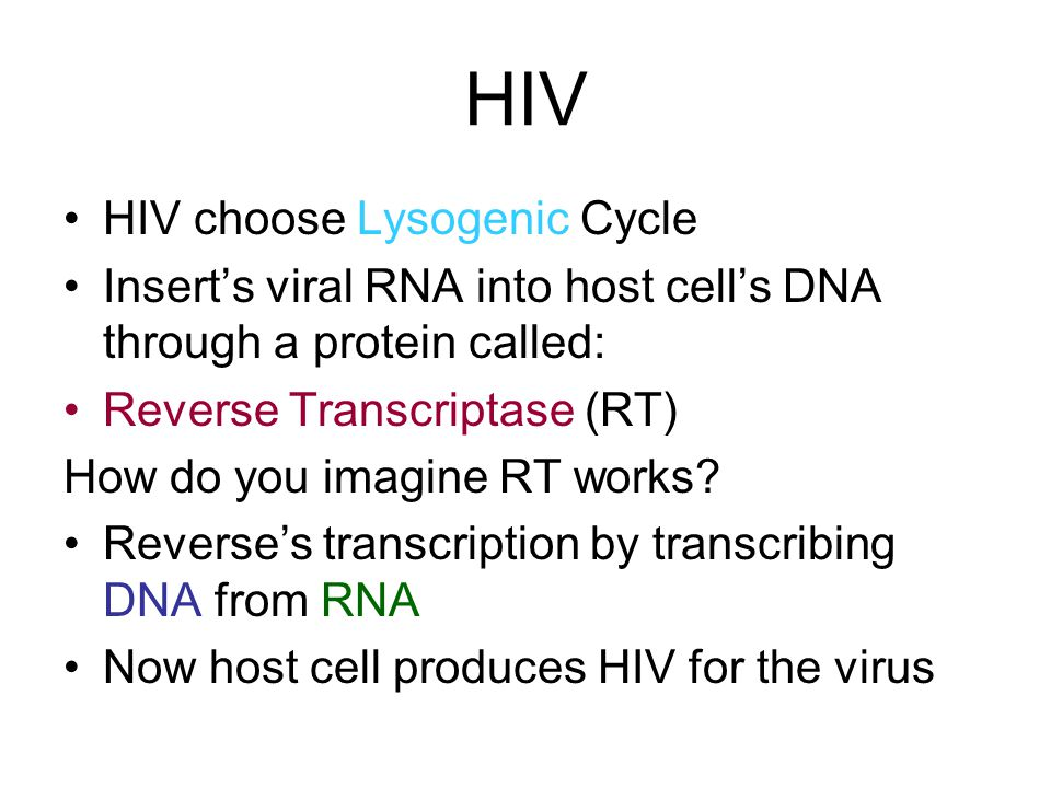 HIV HIV choose Lysogenic Cycle Insert's viral RNA into host cell's DNA through a protein called: Reverse Transcriptase (RT) How do you imagine RT work