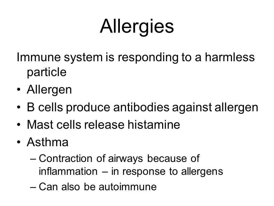 Allergies Immune system is responding to a harmless particle Allergen B cells produce antibodies against allergen Mast cells release histamine Asthma