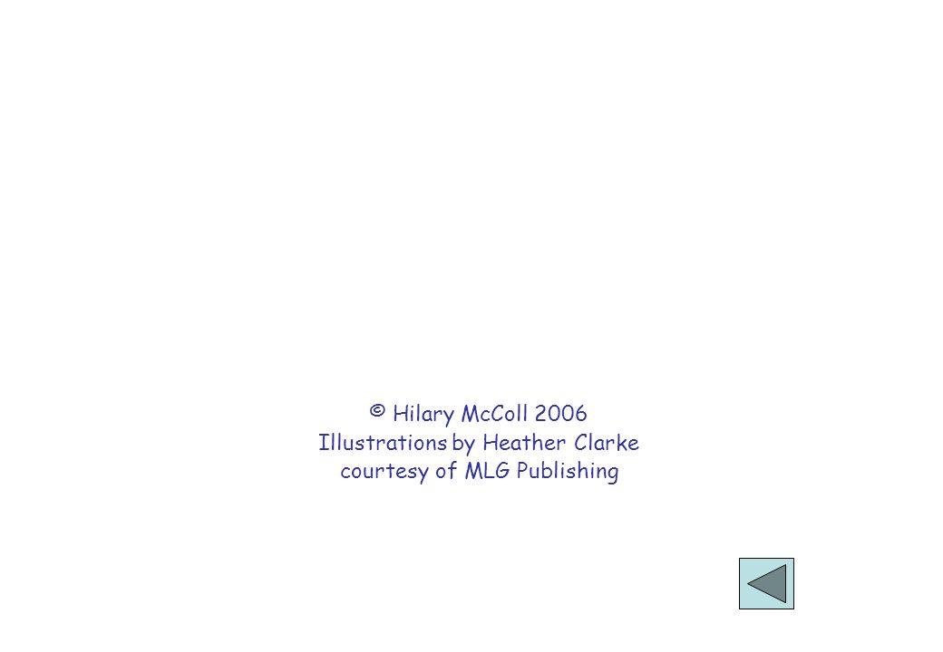 © Hilary McColl 2006 Illustrations by Heather Clarke courtesy of MLG Publishing