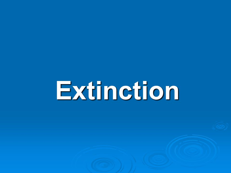 Extinction The Definition and Causes