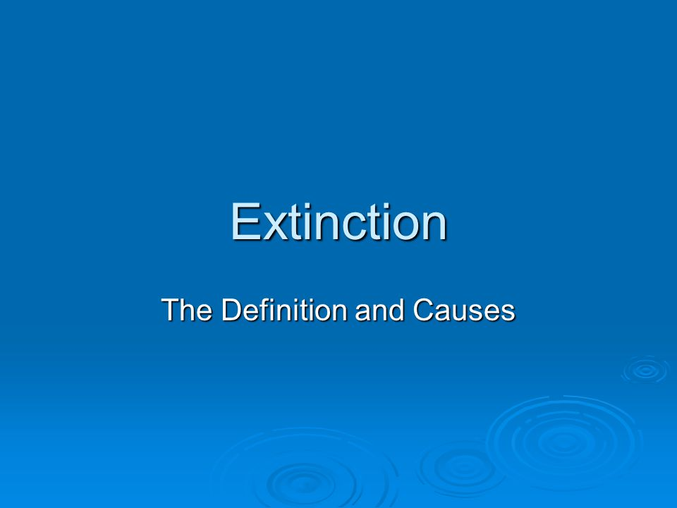 Mass Extinction  Nearly 2/3rds (or more) of all animal species that ever existed on the planet are now gone.