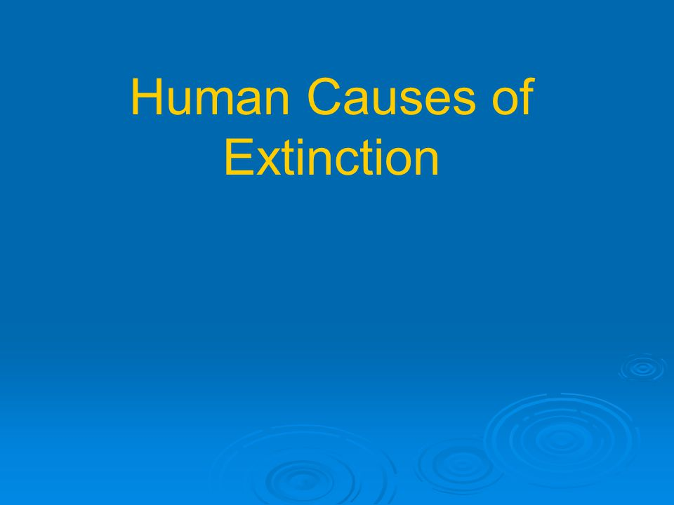 Human Causes of Extinction