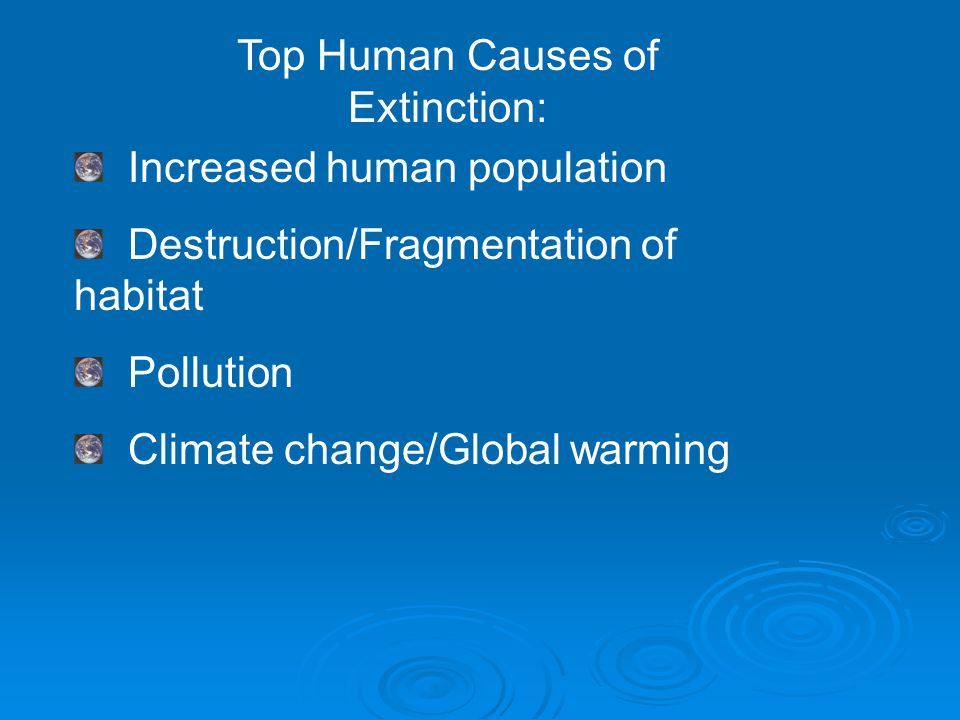Top Human Causes of Extinction: Increased human population Destruction/Fragmentation of habitat Pollution Climate change/Global warming