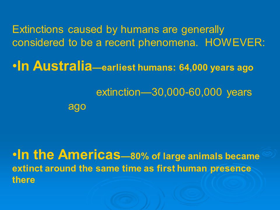 Extinctions caused by humans are generally considered to be a recent phenomena.