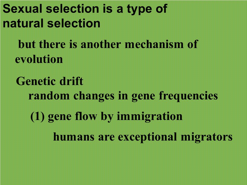 Sexual selection is a type of natural selection but there is another mechanism of evolution Genetic drift random changes in gene frequencies (1) gene flow by immigration humans are exceptional migrators