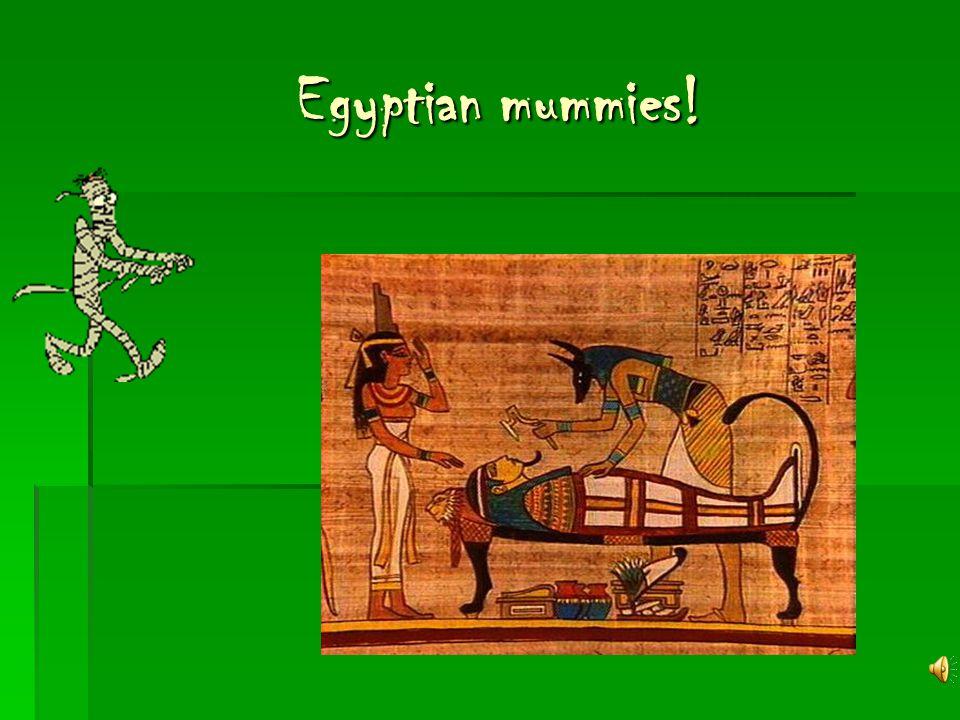 Egyptian mummies! Egyptian mummies!