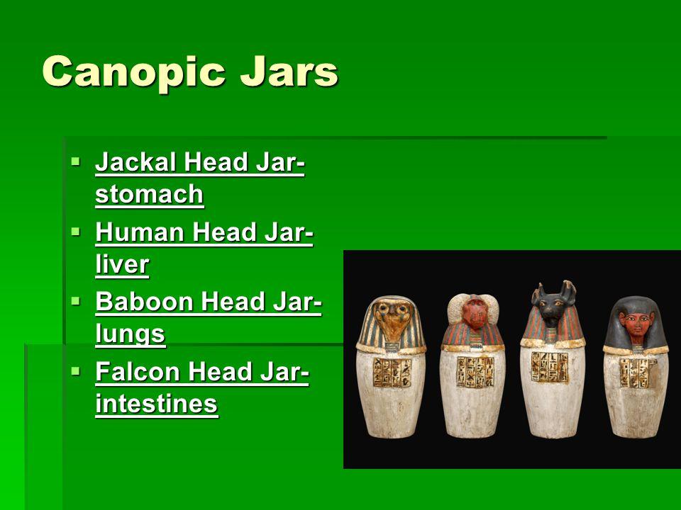 Canopic Jars  Jackal Head Jar- stomach  Human Head Jar- liver  Baboon Head Jar- lungs  Falcon Head Jar- intestines