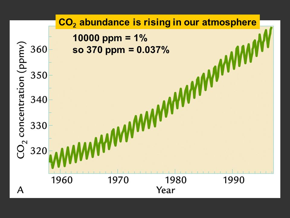 10000 ppm = 1% so 370 ppm = 0.037% CO 2 abundance is rising in our atmosphere