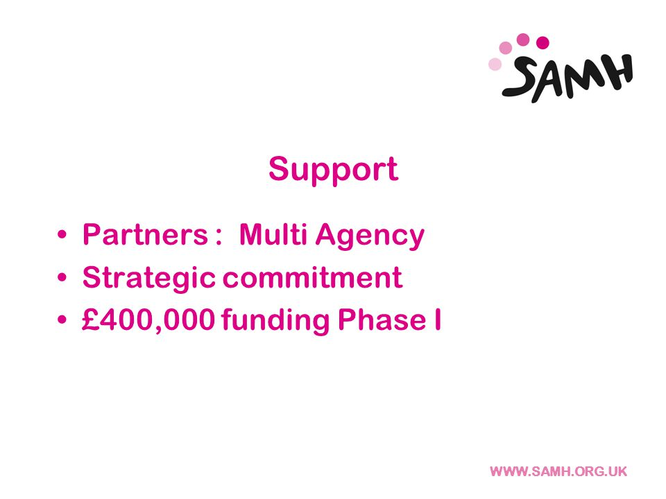 Support Partners : Multi Agency Strategic commitment £400,000 funding Phase I